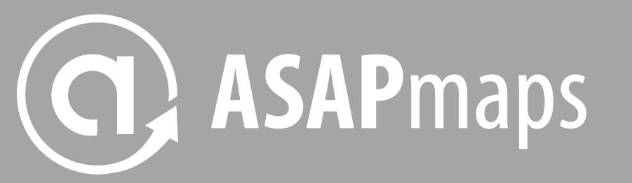 ASAPmaps Full Logo (grey, horizontal)