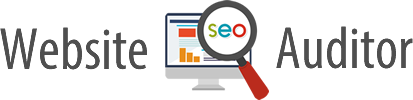 Website SEO Auditor